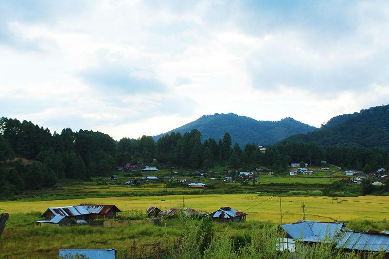 Ziro Valley Arunachal Pradesh