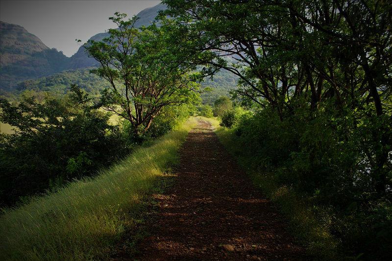 Andharban Jungle trail Start Point