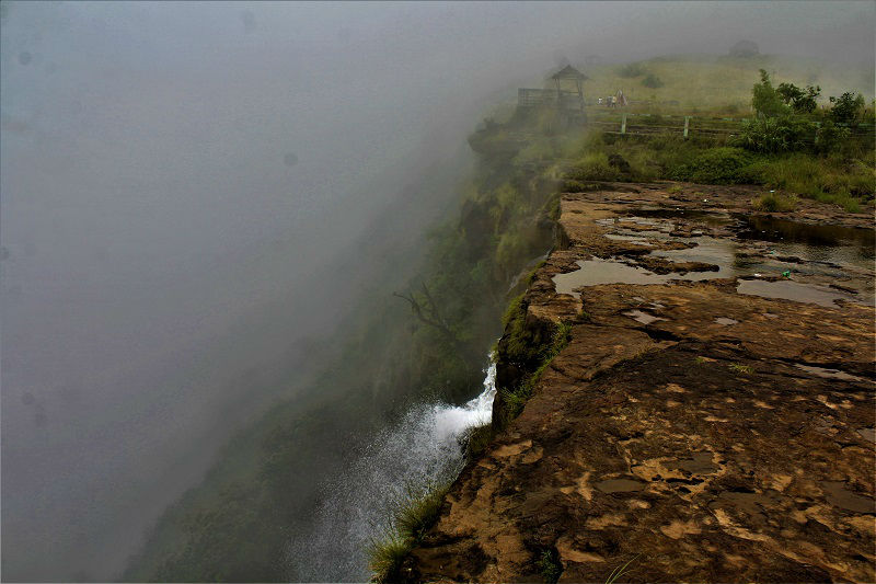 Eco park cherrapunji