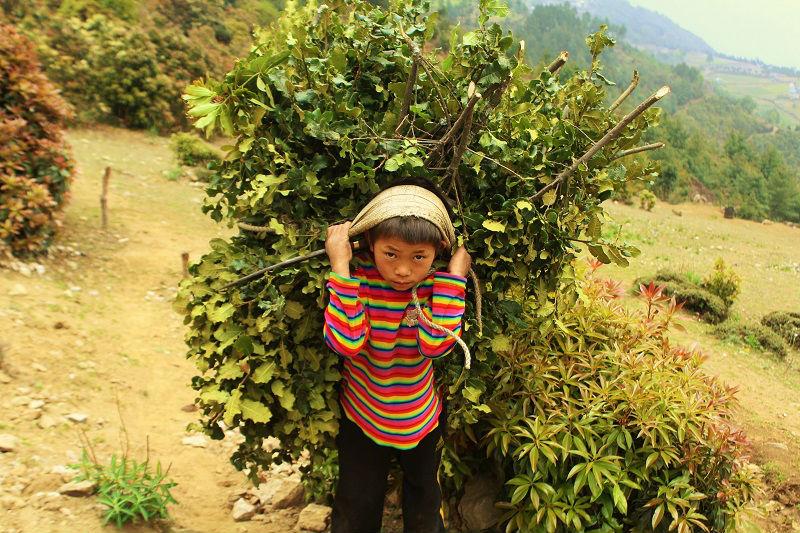 hard life for kid Everest Base Camp trek