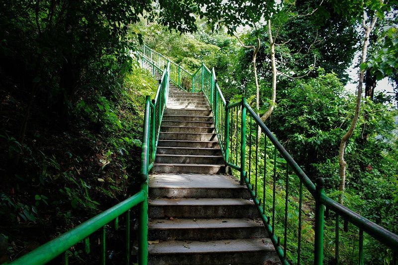 steps to reach base of Jog Falls Karnataka