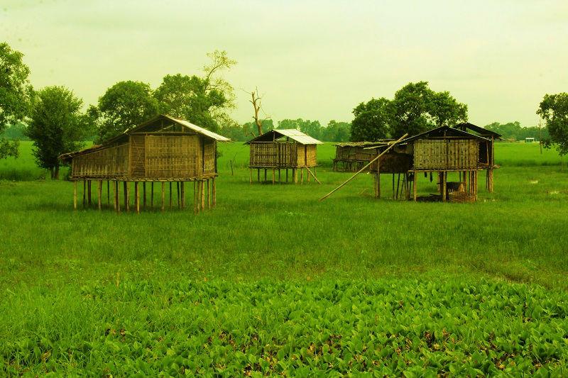 Bamboo houses at majuli river island assam