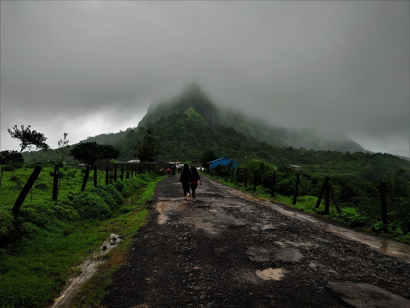 Foggy conditions Visapur Fort trek