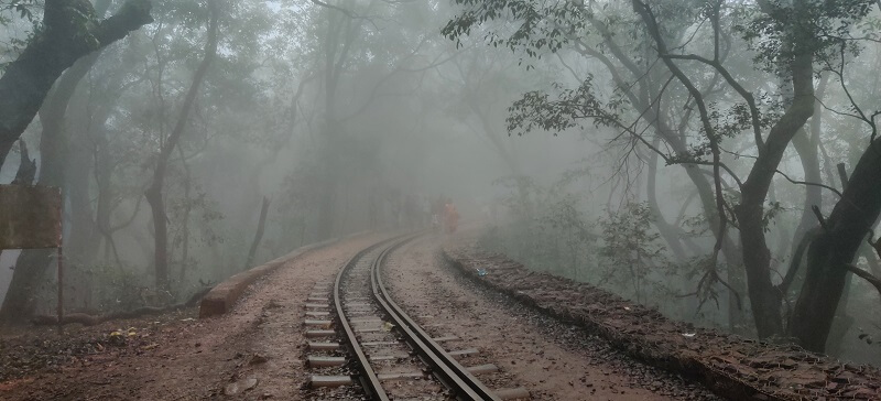 Foggy scenes at matheran