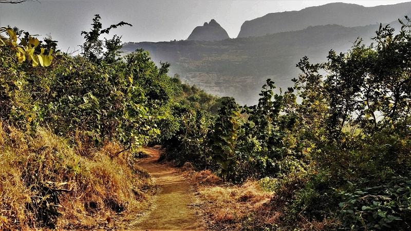 Kalavantin Durg Trek near Pune