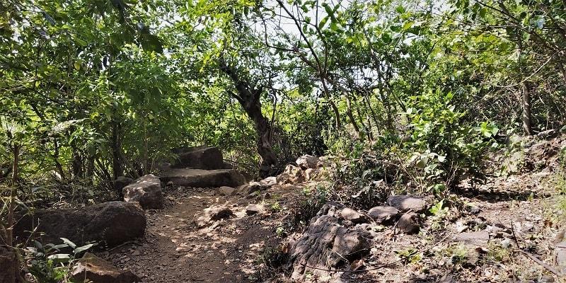 Kalavantin Durg Trek route
