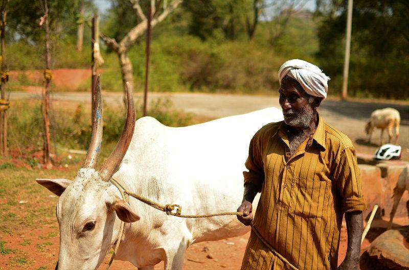 Local at Hampi Karnataka