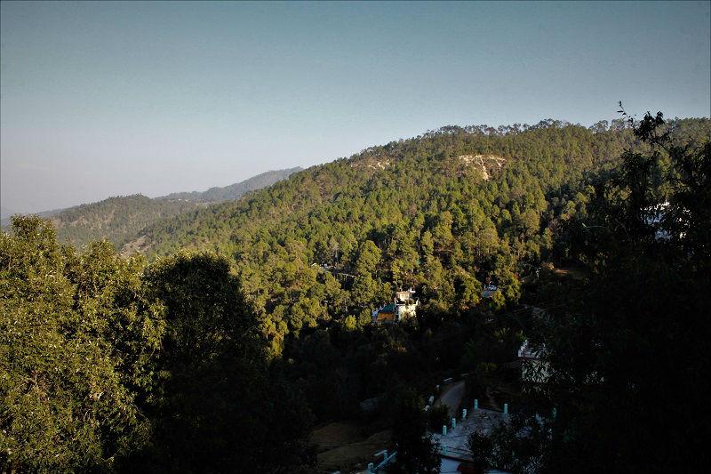 Lush green Kausani Uttarakhand