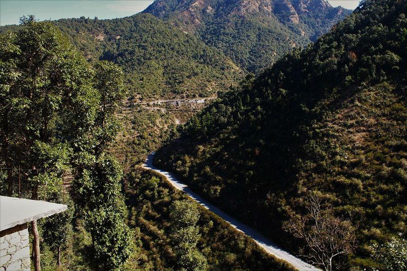 Lush green Khirsu Uttrakhand