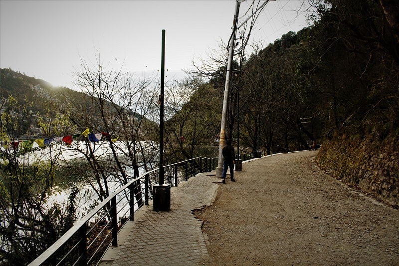 Peaceful road at Nainital Uttarakhand