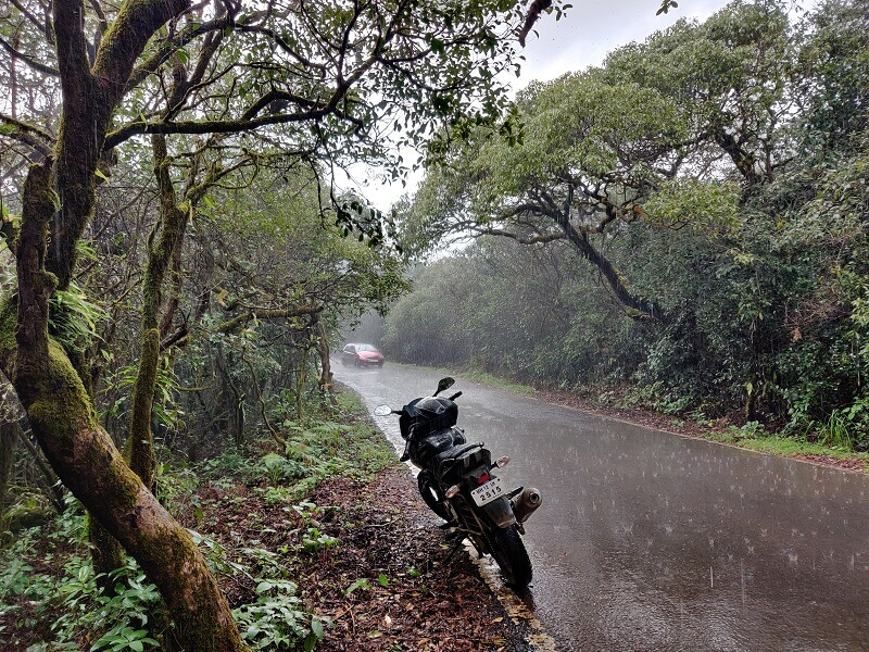 Raining at Mahabaleshwar