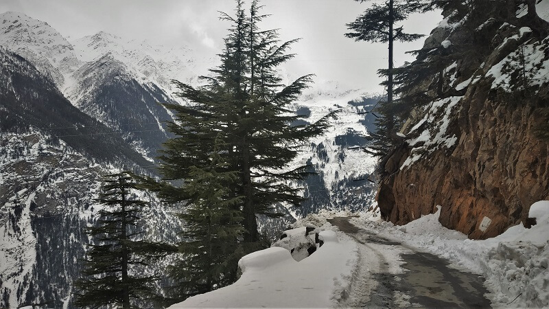 Route to Roghi village near Kalpa Himachal