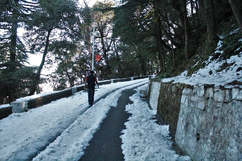 Snow on Chail road in winters