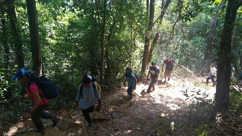 Trekking in jungles of Vasota
