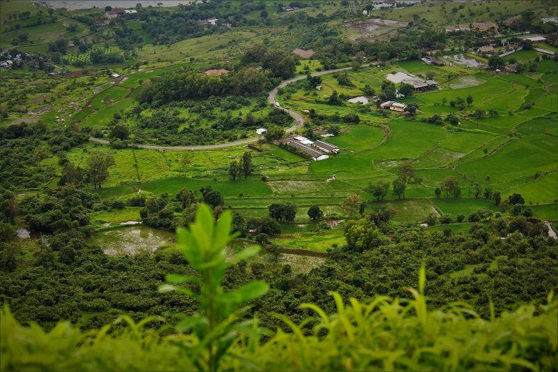 lush green landscapes Tikona Fort
