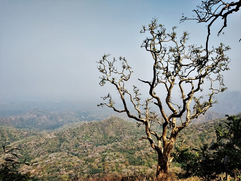 on way to Parshuram Mahadev Cave