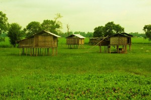 Bamboo houses at majuli river island assam