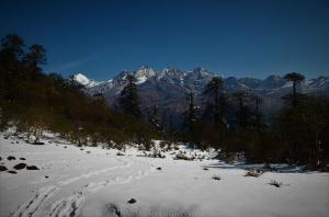 Goechala trek Yuksom Sikkim