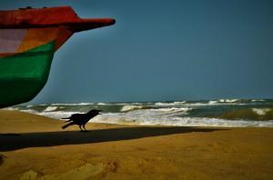 Serenity Beach Puducherry