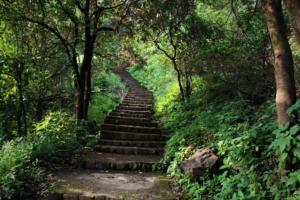Staircase way Korigad Fort Trek