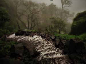 Water flowing through stairs at Korigad Fort Trek
