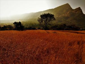 beautiful landscape Andharban Jungle trek Start Point