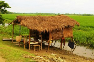 houses at majuli river island assam