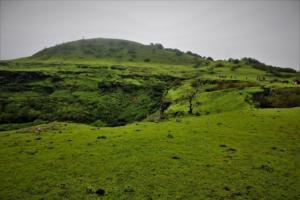 lush green plateau Visapur Fort trek