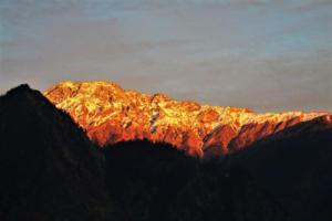 orange glowing mountain as seen from Joshimat near Auli Hill Station Uttrakhand