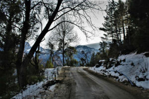 snowy roads at Auli Hill station Uttrakhand