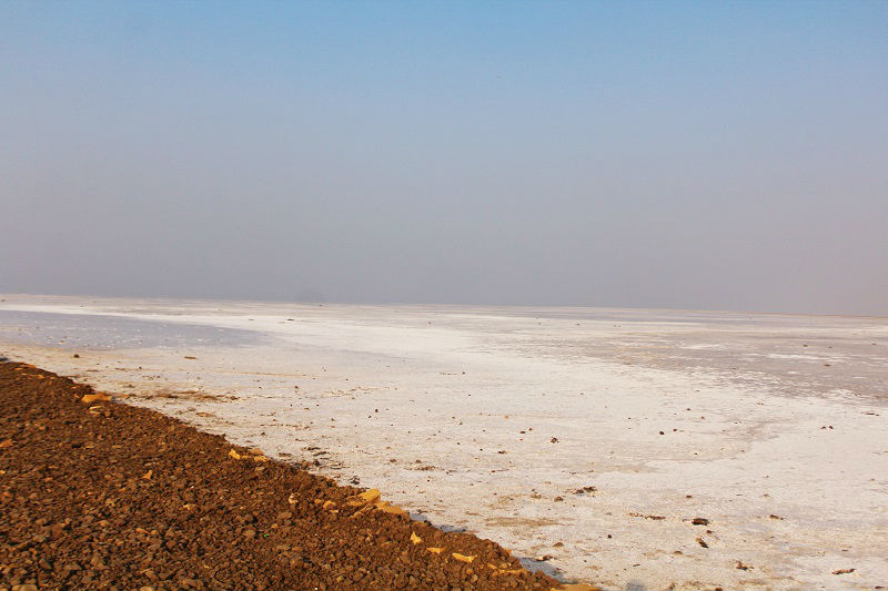 Image result for Great Rann White Desert beach Kutch