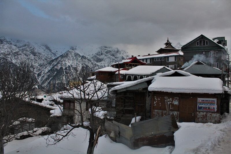 snow covered in Kalpa in winters