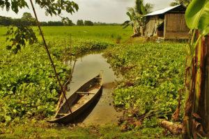 home at majuli river island assam