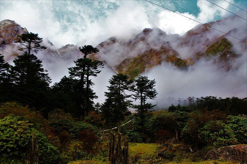 yumthang valley Zero point sikkim